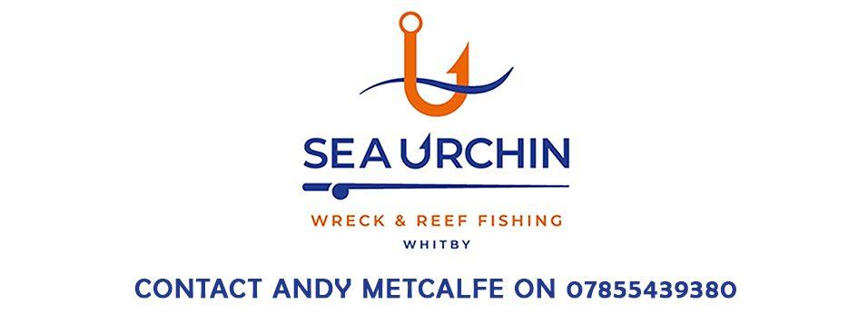 Sea Urchin III Whitby